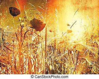sguardo, vendemmia, -, mettere campo papavero, pittura