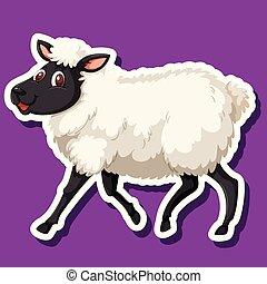 sheep, imporpori sfondo