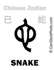 (sign, zodiac), cinese, serpente, astrology:
