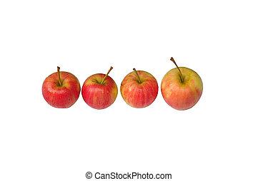 signora, rosa, mela