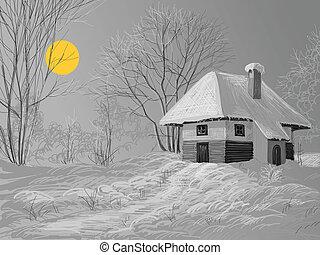 silenzioso, inverno, notte