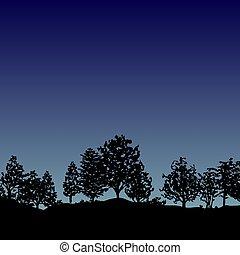 silhouette, albero, foresta, fondo, notte