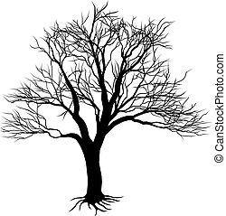 silhouette, albero nudo