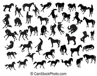 silhouette, cavallo, -, collezione, illustrazione