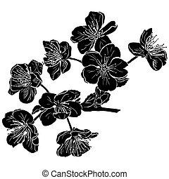 silhouette, fiori, albero, mela, nero