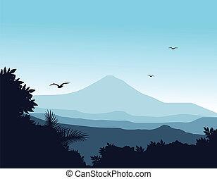 silhouette, fondo, natura