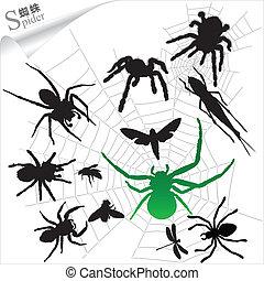 silhouette, insetti, ragni, -
