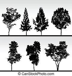 silhouette, nero, albero