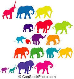silhouette, set, colorato, elefante