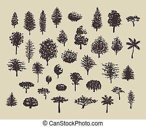 silhouette, set, foresta, albero