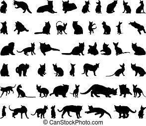 silhouette, set, gatto