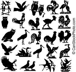 silhouette, uccello, illustrazione, collezione