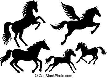 silhouette, vettore, cavallo