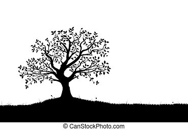 silhouette, vettore, vectorial, albero