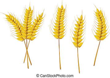 simboli, agricoltura