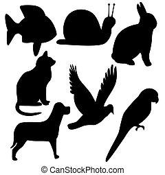 simboli, animale