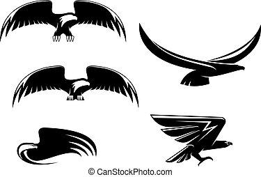 simboli, araldica, aquila, tatuaggio