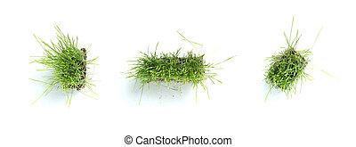 simboli, fatto, periodo, -, lineetta, virgola, erba
