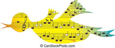 simboli, musica, uccello