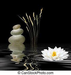 simboli, zen