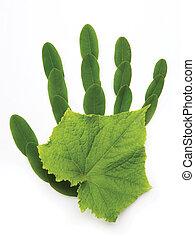 simbolo, arte, ecologico, mano, natura