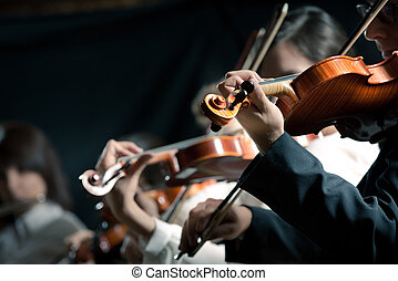 sinfonia, violinisti, compiendo, orchestra