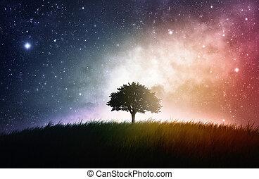 singolo, albero, fondo, spazio