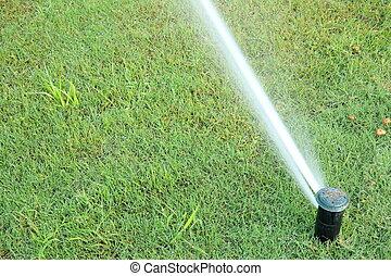 sistema, irrigazione, automatico, verde