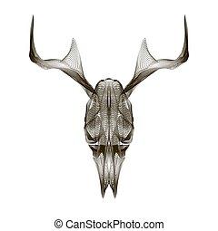 skull., stile, t-shirt., cervo, vettore, stampa, tatuaggio, 3d