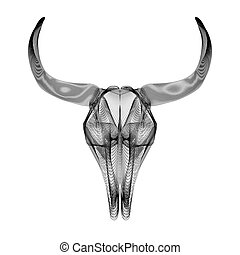 skull., stile, t-shirt., stampe, illustrazione, vettore, toro, o, 3d