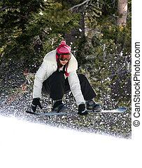 snowboarding, foresta
