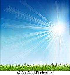 sole, erba, verde, trave