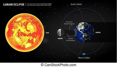 sole, illustrazione, luna, vettore, lunare, terra, eclissi