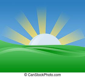 sole, illustrazione, mattina