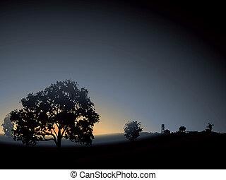solitario, albero, mist., mattina