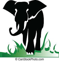 solo, illustrazione, elefante