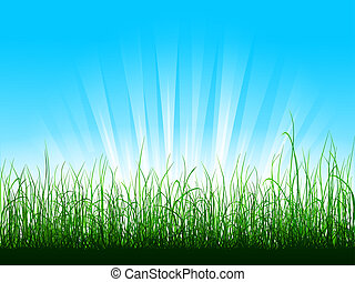 sopra, cielo blu, erba, verde