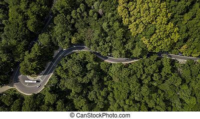 sopra, road., automobili, curvy, direttamente, vista