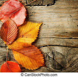 sopra, spazio, foglie, legno, copia, fondo., autunno