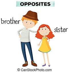 sorella, fratello, parole, opposto