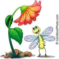 sorridente, libellula, fiore, sotto, gigante