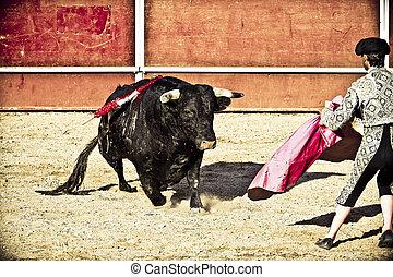 spain., bullfight., matador, toro, madrid