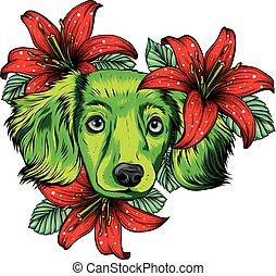 spaniel, vettore, fiore, ritratto, wreath., illustration., cane, testa