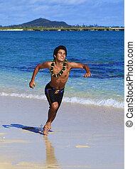 spiaggia, correndo, hawai, uomo