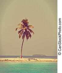 spiaggia, effetto, cyan, sabbioso, palma, sea., albero, maldives., retro