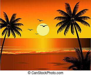 spiaggia tropicale, illustrazione