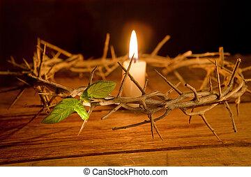 spine, candela, corona