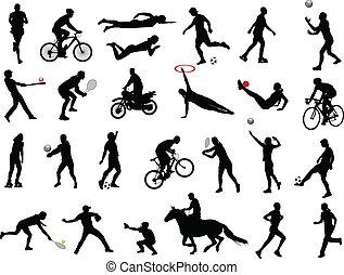 sport, collezione