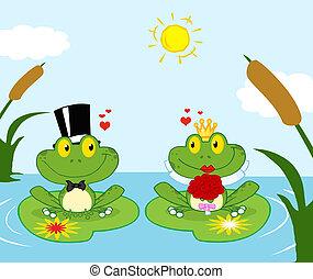 sposa, sposo, rana, stagno
