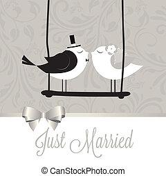 sposato, uccelli, giusto